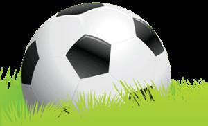 Fotbollsskon 2015